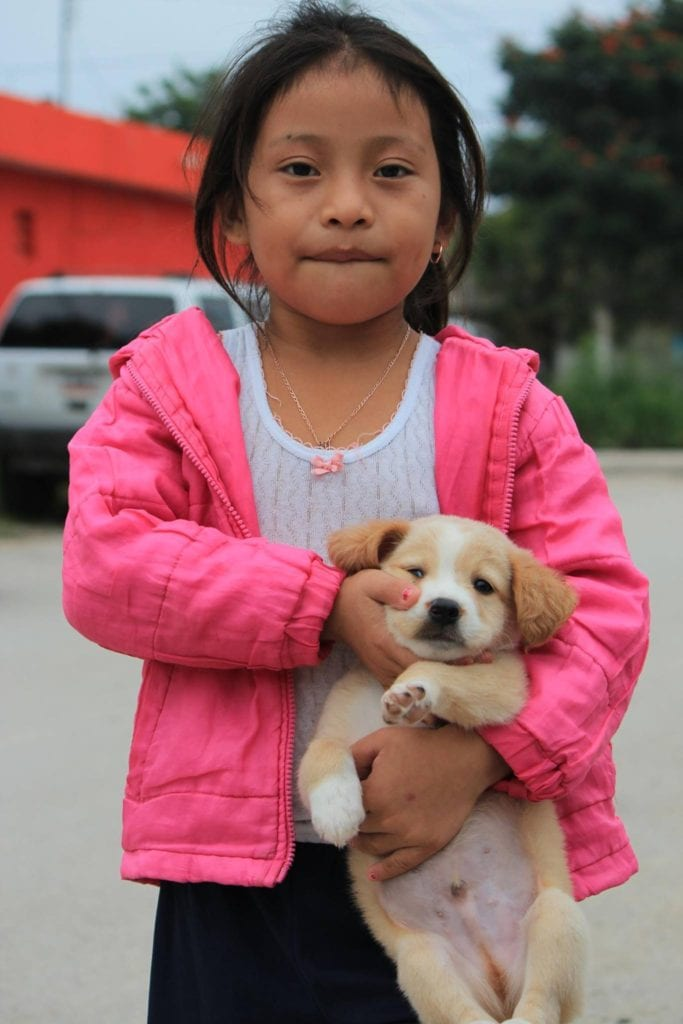Young dog owner with her puppy