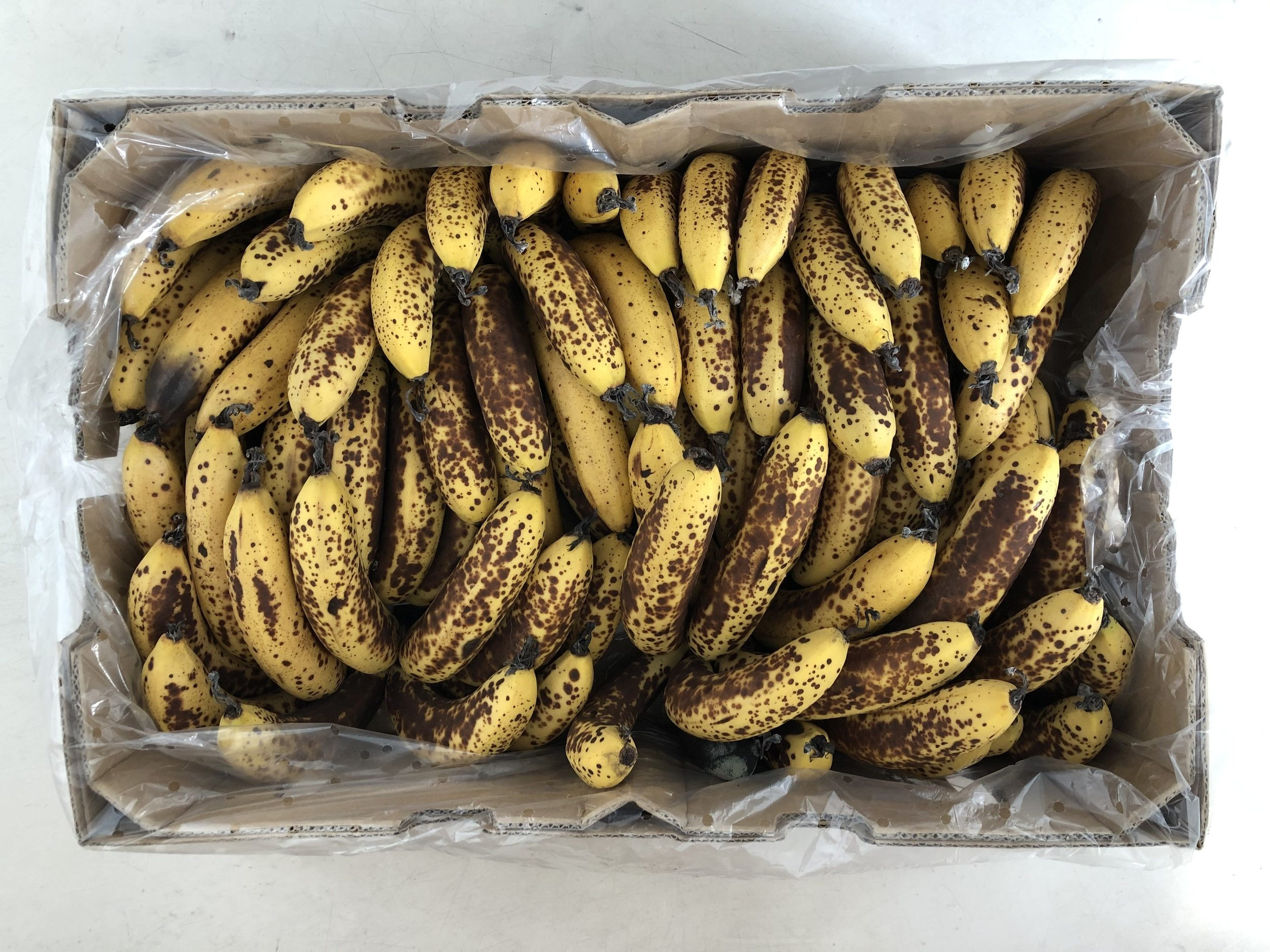 Box of bananas showing how ripe they need to be for dogs to eat them