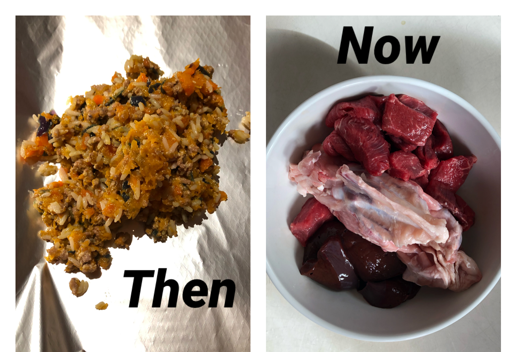 Home cooked food for dogs compared to raw dog food